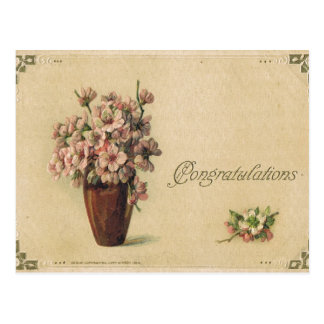 Antique Congratulations Post Card-Violets Postcard