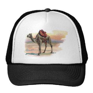 Antique Dromedary Camel Illustration Trucker Hat