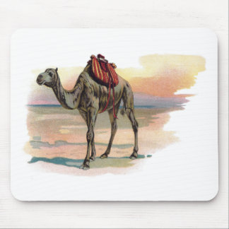 Antique Dromedary Camel Illustration Mouse Pad