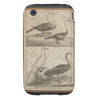 Antique Engraving 1 Tough iPhone 3 Cases