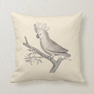 Antique Engraving of a Cockatoo Histoire Naturelle Throw Pillow