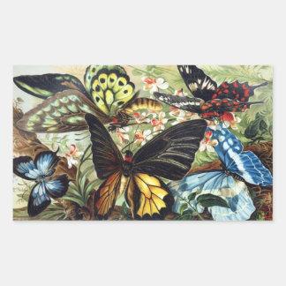 Antique Exotic butterflies butterfly illustration Rectangular Sticker
