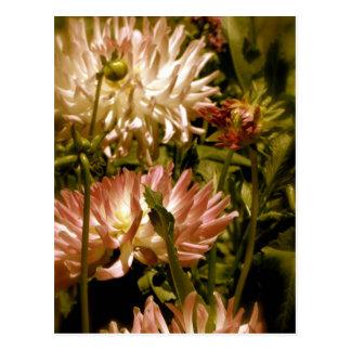 antique flowers postcard