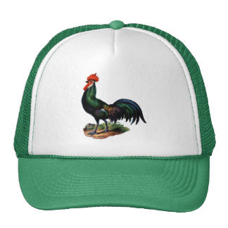 Antique Green Feathers Rooster Trucker Hat