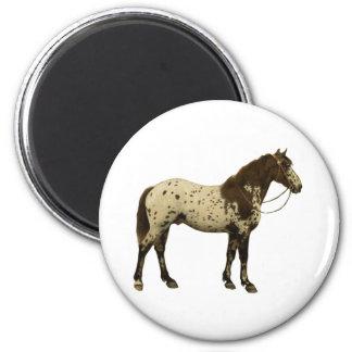 Antique Horses - Appaloosa Magnet