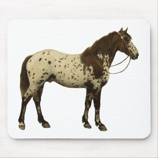 Antique Horses - Appaloosa Mouse Pad
