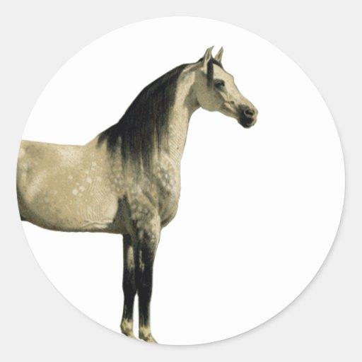 Antique Horses - Arabian Round Stickers