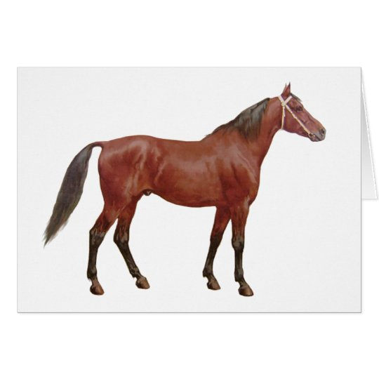 Antique Horses - Thoroughbred Card