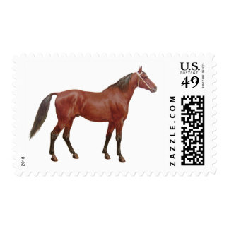 Antique Horses - Thoroughbred Postage Stamp