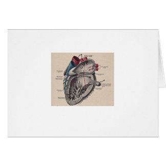 Antique human heart anatomy diagram card