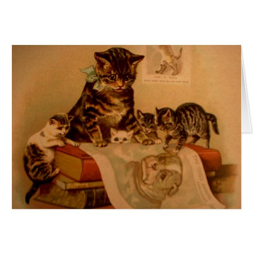 Antique Kittens & Books Kitty School Card