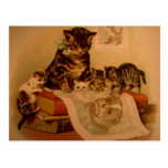 Antique Kittens & Books Kitty School Post Cards