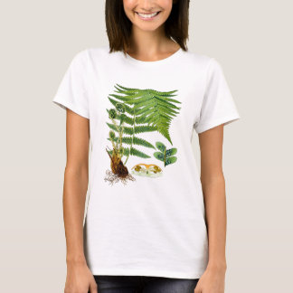 Antique Kohler Fern Illustration Green Decor T-Shirt