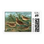 Antique Litho, Eurasian skylark, Short-toed Lark Stamps