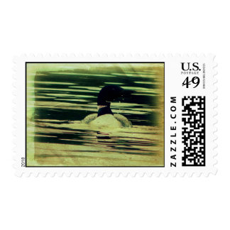 Antique Look Loon on The Water Postage