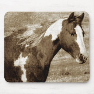 Antique Looking Paint Mare Mouse Pads