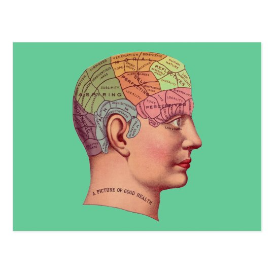 antique Mind Brain Map Phrenology head Postcard