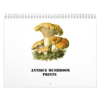 Antique Mushroom Print Calendar