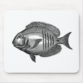 Antique Natural History Fish Engraving Mouse Pad