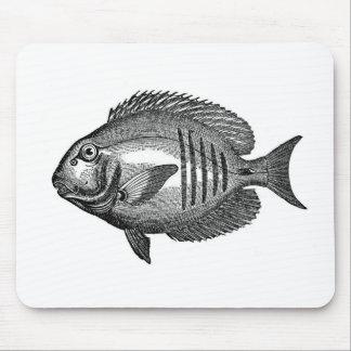 Antique Natural History Fish Engraving Mousepads