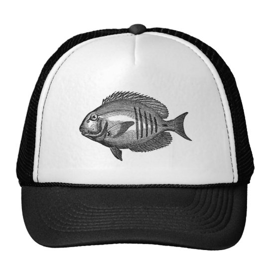 Antique Natural History Fish Engraving Trucker Hat