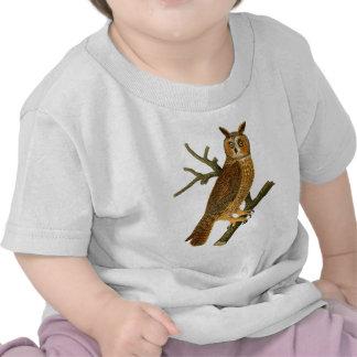 Antique Natural History Owl Illustration T Shirt