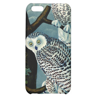 Antique Natural History Snowy Owl  Print iPhone 5C Case