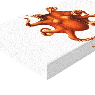 antique octopus illustration canvas print