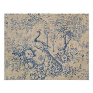 Antique Peacock Toile Poster