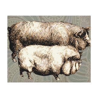 Antique Pigs Vintage piggy drawing Canvas Print