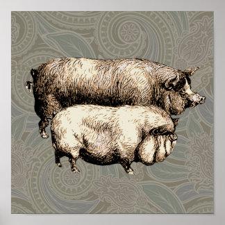Antique Pigs Vintage piggy drawing Print