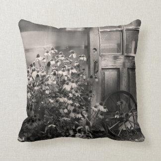 Antique Pillows