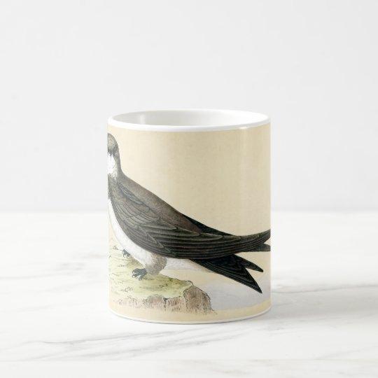 Antique Print of a Alpine Swift Coffee Mug