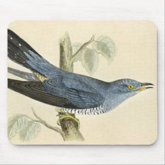 Antique Print of a Common Cuckoo Mousemats