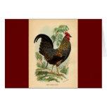 Antique Print Vintage Rooster Cockerel Greeting Card