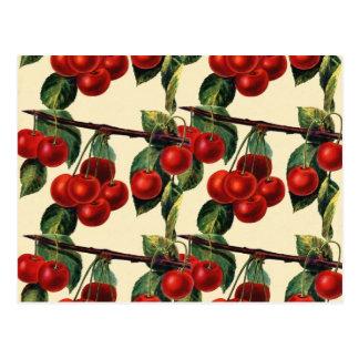 Antique Red Cherry Fruit Wallpaper Design Postcard