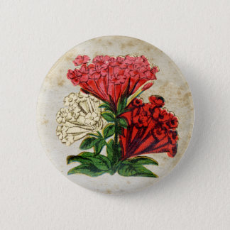 Antique Red Flower Bouquet Pinback Button