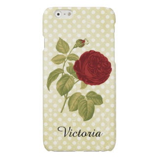 Antique Red Rose Parchment Polka Dots Glossy iPhone 6 Case