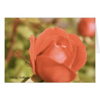 Antique Rose Card