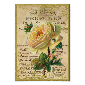 Antique Roses Perfume Butterflies Poster