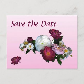 Antique Roses Save the Date postcard