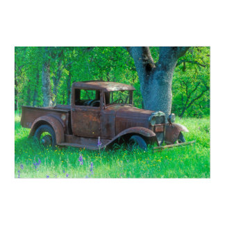 Antique rusted truck in a meadow acrylic wall art