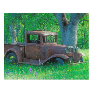 Antique rusted truck in a meadow panel wall art