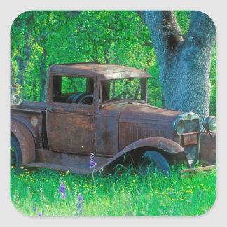 Antique rusted truck in a meadow square sticker