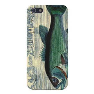 Antique Salmon Fish Fishing Print Case For iPhone SE/5/5s