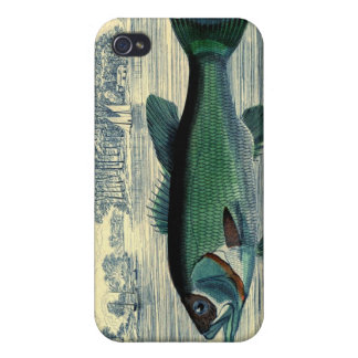 Antique Salmon Fish Fishing Print iPhone 4/4S Cover