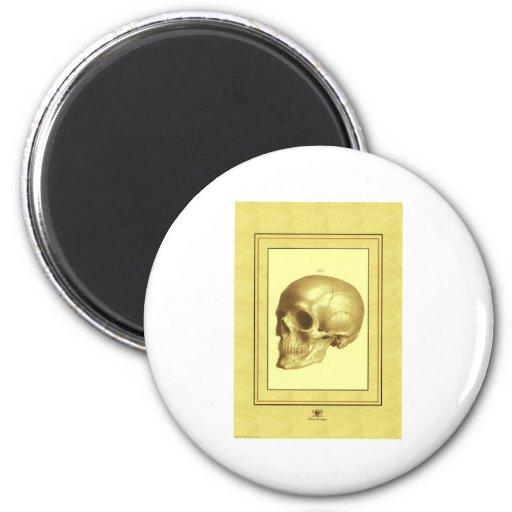 Antique Skull 2 Inch Round Magnet