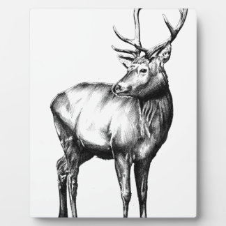 Antique stag art drawing handmade nature plaque
