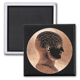 Antique Style Golden Mind Phrenology head 2 Inch Square Magnet