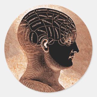 Antique Style Golden Mind Phrenology head Classic Round Sticker